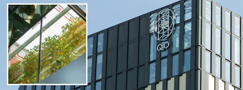 Excursie projecten Zuidas - QO Amsterdam